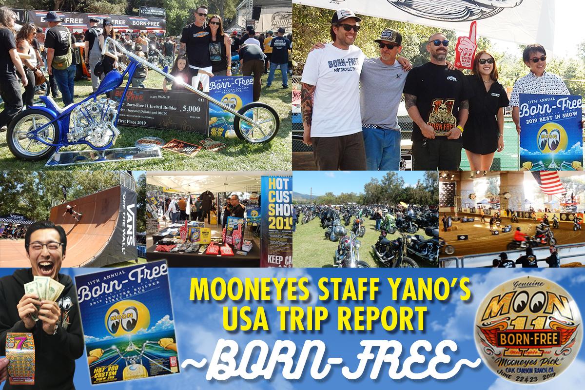 Trip Report Born Free #11